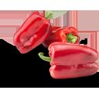 """Pimiento Rojo """"CAPIA"""""""